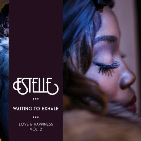 Estelle-Waiting-To-Exhale-500x500
